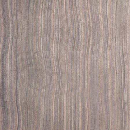ebony tree: ebony wood texture, tree background