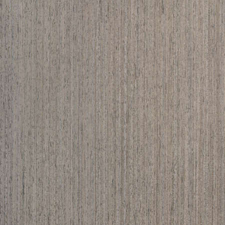 ebony wood: ebony wood veneer, tree background