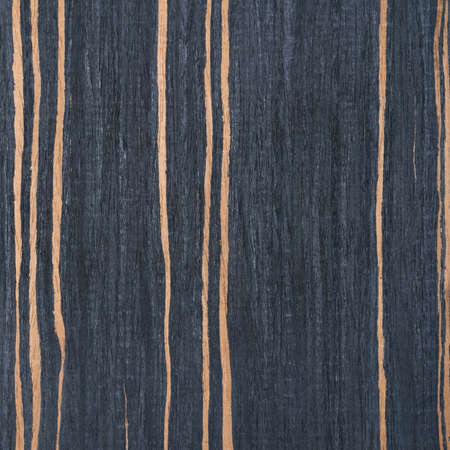 striped ebony wood texture, tree background photo