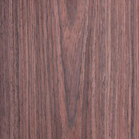 rosewood wood texture, tree background photo