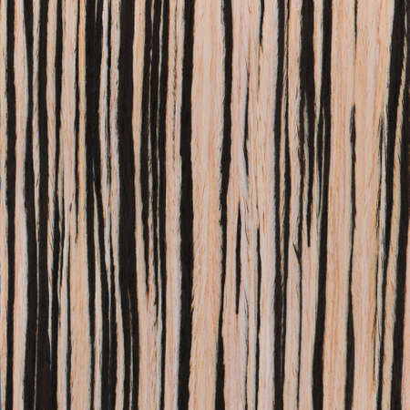 zebrano wood texture, wood grain photo