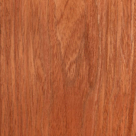 cherry texture wood, tree background photo