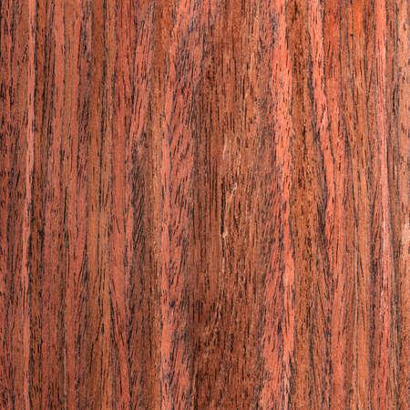 wengue: �rbol textura wengu�, chapa de madera