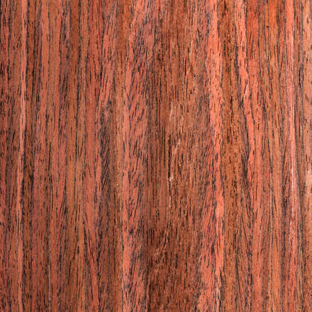 texture wenge tree, wood veneer photo