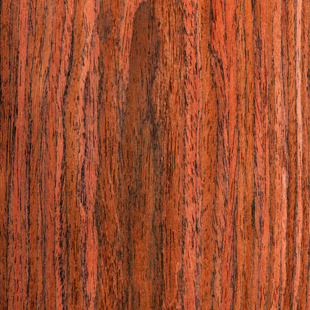 texture wenge tree, wood grain  photo