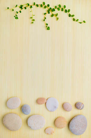 green branches and pebbles on wooden  background photo