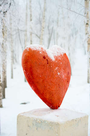 Lonely red heart on the base over forest photo