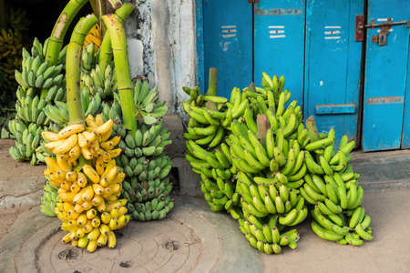bunch up: green and yellow bananas in a bunch up for sale Stock Photo