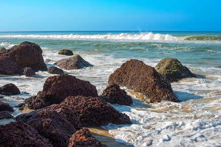 waves breaking on a stony beach and a little bird, Varkala, Kerala, India