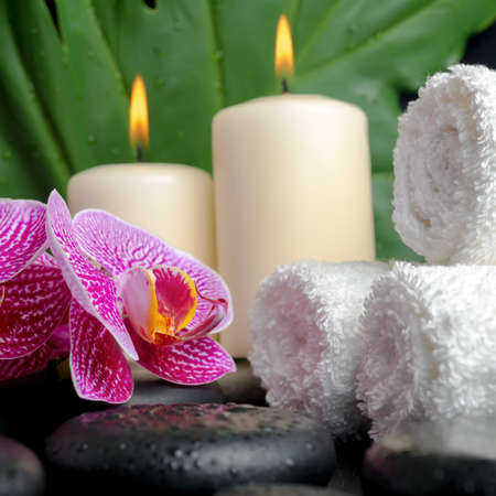 zen stones: Beautiful spa concept of zen stones with drops, blooming twig of stripped violet orchid (phalaenopsis), big green leaf  and stacked of towels and candles, closeup