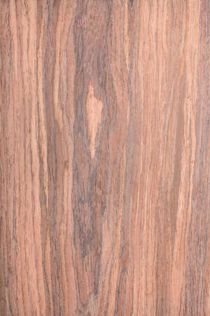 walnut wood grain , tree background, natural rural tree background photo