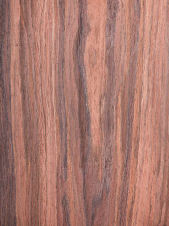 walnut, wood grain, texture, tree background, natural rural tree background photo