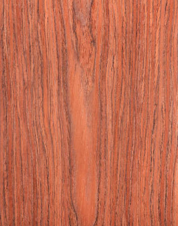 cherry wood texture,  natural rural tree background photo