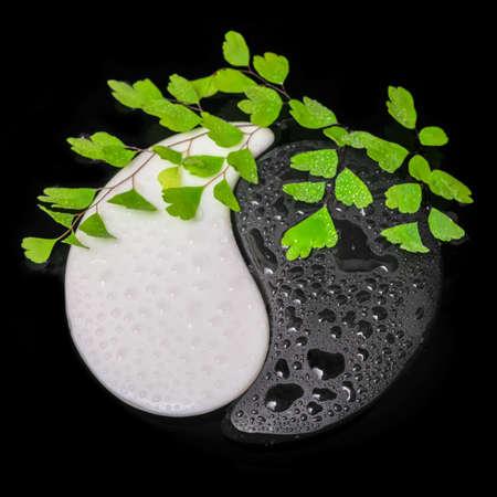 symbool van Yin-Yang van steen textuur, het teken van de twee elementen met een takje varen en enkele op het water zwarte achtergrond Stockfoto
