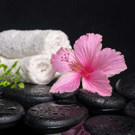 Beautiful spa still life of pink hibiscus, branch fern, drops and towels on zen stones with reflection water, closeup photo