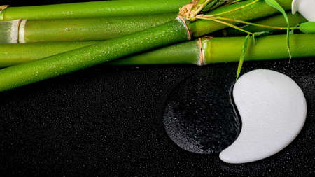 spa setting of white frangipani flower, symbol Yin Yang and natural bamboo with leaves on zen basalt stones with drops, closeup  photo