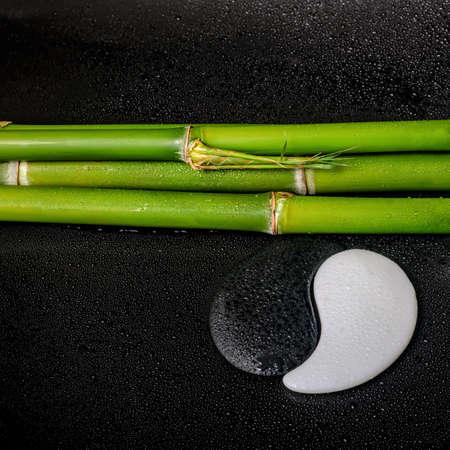 spa still life of  symbol Yin Yang and natural bamboo  on zen basalt stones with drops, closeup photo