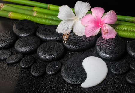 kuureiland wit, roze hibiscus bloemen, symbool Yin Yang en natuurlijke bamboe op zen basalt stenen met druppels, close-up Stockfoto