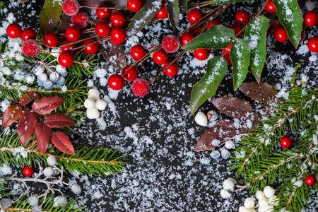 winter concept van de groenblijvende takken, rode bladeren en bessen met sneeuw, close-up