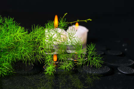 Asparagus with drops and candles on zen basalt stones in reflection water photo