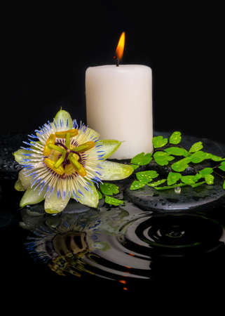 reflection of life: spa still life of passiflora flower, green leaf fern with drop and candle on zen stones in ripple reflection water, closeup