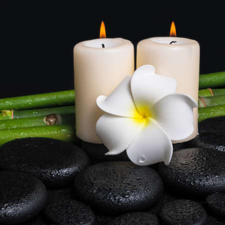 spa concept of zen basalt stones, white flower frangipani, candles and natural bamboo with drops, closeup photo