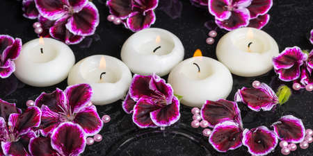 reflection of life: beautiful spa still life of geranium flower and candles in ripple reflection water, Royal Pelargonium, panorama