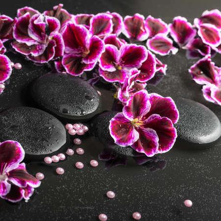 reflection of life: beautiful spa still life of blooming dark purple geranium flower and beads on reflection dark water, closeup Stock Photo