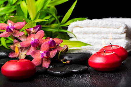 spa concept of blooming twig red orchid flower, phalaenopsis, bamboo with dew, towels and candles on zen basalt stones, closeup photo