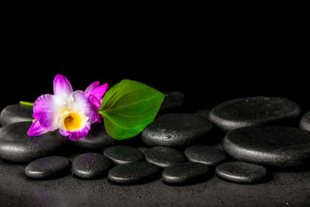 zen water: spa background of purple orchid dendrobium and green leaf Calla lily with drops on black zen stones, closeup