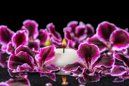 fire flower: beautiful spa background of blooming dark purple geranium flower, beads and candle in reflection water, isolated on black