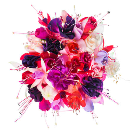 purple floral: bouquet of colorful fuchsia flowers is isolated on white background, closeup