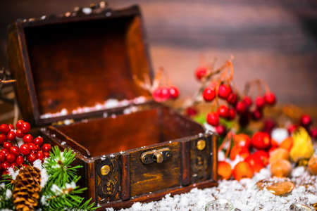 ice chest: Christmas winter concept with opened chest, apple, nuts, cones, berries, fir tree and snow, closeup Stock Photo