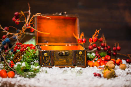 ice chest: Christmas winter fairy with miracle in opened chest. Winter background of mystery gift New Year, fir tree and snow Stock Photo