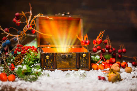 miracle tree: Christmas winter fairy with miracle in opened chest. Winter background of mystery gift New Year, fir tree and snow Stock Photo