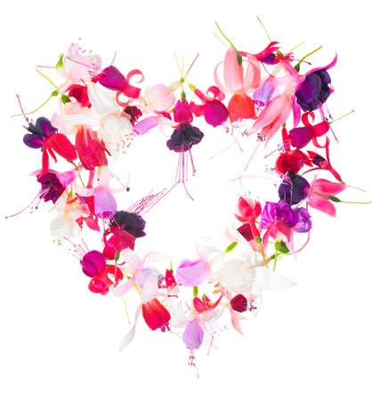 flores fucsia: Valentine ramo de flores coloridas del dise�o del coraz�n fucsia est� aislado en el fondo blanco, primer