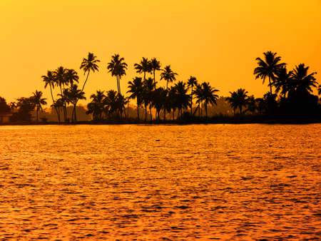 sultry: beautiful sultry tropical sunset landscape with silhouette of palm trees, travel background, India