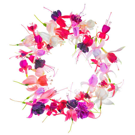 mammy: greeting wreath of colorful fuchsia flower with place for your text or image, card for summer or spring designs, flower decoration cheese is isolated on white background, close up
