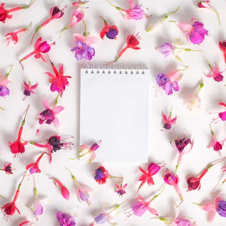 flores fucsia: en plano de cuaderno vacío y se dirige híbridos de colores fucsia flores en blanco como fondo, primer