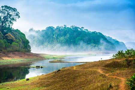 beautiful landscape with wild forest and river with fog in India. Periyar National Park, Kerala, India 免版税图像