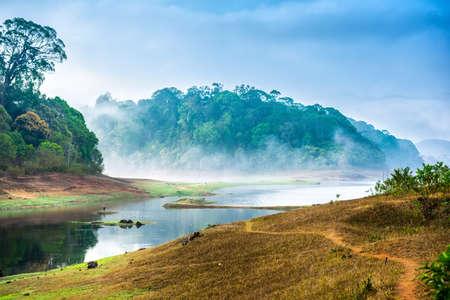 mooi landschap met wild bos en rivier met mist in India. Periyar Nationaal Park, Kerala, India