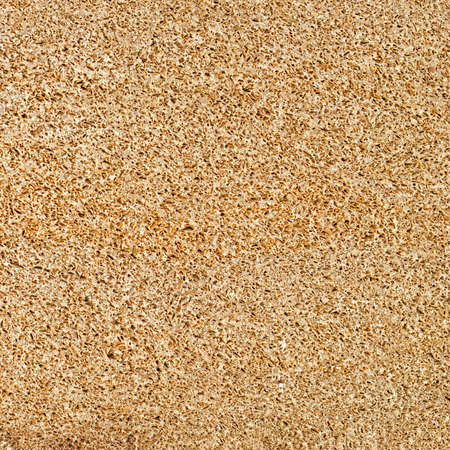 seamless of pumice porous texture background, natural stone