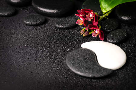 Beautiful spa background of zen and Yin-Yang stones with drops, red mini orchid (phalaenopsis) and green leaf. Copy space