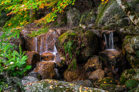 Waterfalls and stones in forest, Japan