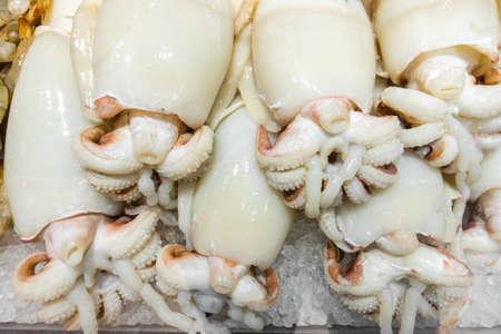 Calamares crudos sobre hielo en el mercado de pescado, antecedentes Foto de archivo