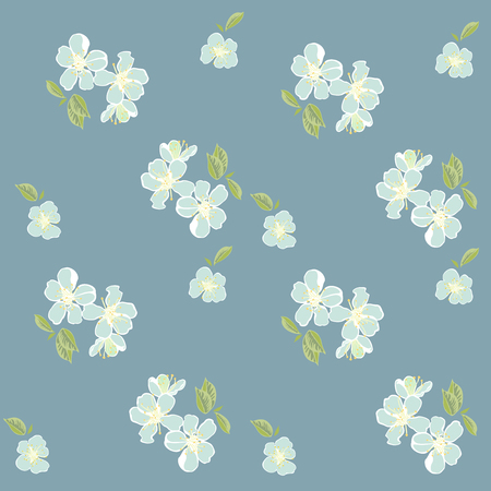 jonquil: Cherry blossoms of white flowers on a blue background