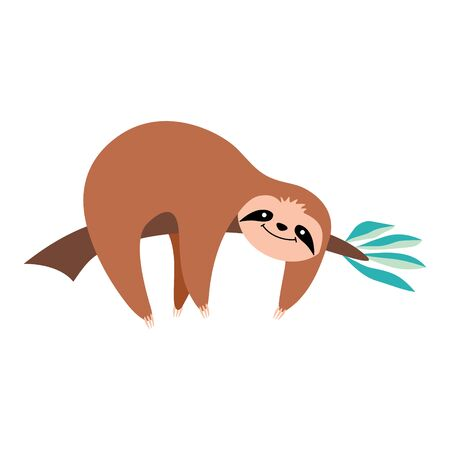 Cute cartoon sloth lying on a tree branch. Funny exotic animal isolated on white background. Flat vector illustration.