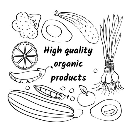 High quality organic products poster. Hand drawn fruits and vegetables with inscription. Black and white vector illustartion. Ilustracja