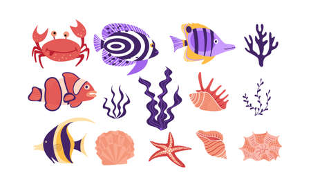 Underwater tropical creatures and objects isolated on white background. Flat vector illustration. Çizim