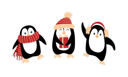Cute cartoon Christmas penguins isolated on white background. Vector illustration.